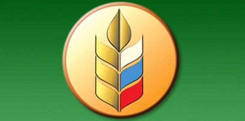 Роман Чекушов, директор Департамента развития экспорта продукции АПК Минсельхоза России