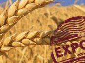 В первом квартале российский агроэкспорт в Китай превысил 1 млрд долларов