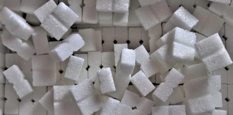 Экспортные гиды: свекловичный сахар и жом (Китай)