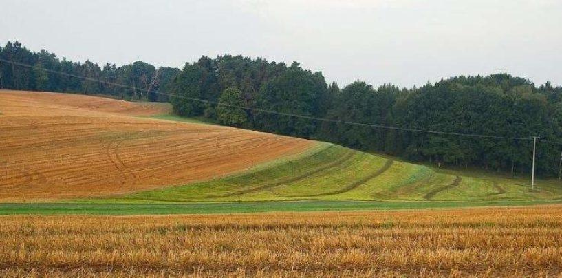 Земли сельхозназначения, зерноперерабатывающие предприятия и предприятия хлебопродуктов на продажу