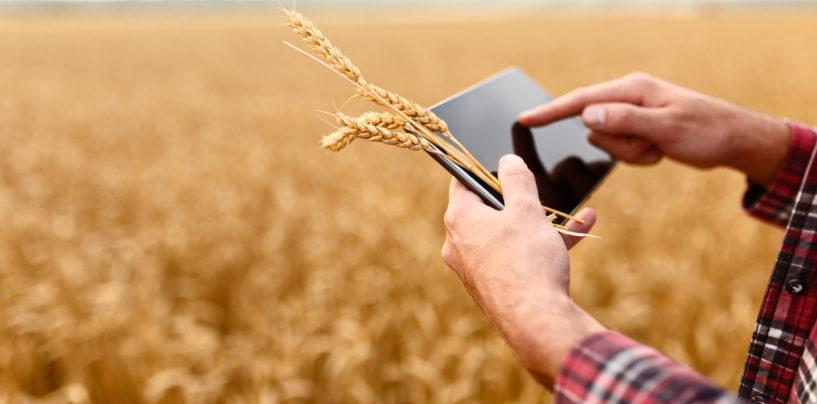 Акцент на образование: Россельхозбанк представил стратегию развития Своего Фермерства-2025