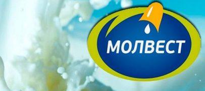 В первом полугодии ГК «Молвест» экспортировала более 600 тонн молочной продукции